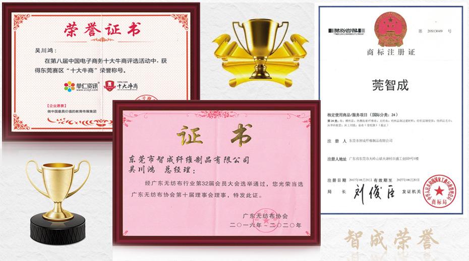 星辉注册荣誉