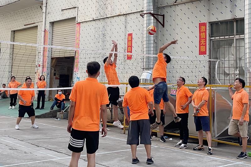 星辉注册排球赛