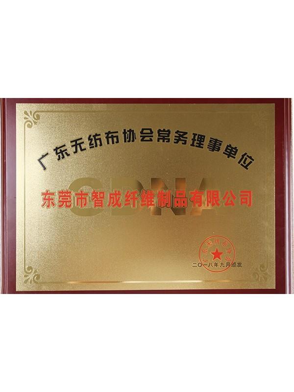 星辉注册海南省无纺布协会常务理事单位